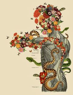 L'anatomie du corps humain en fleurs