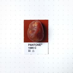 Pantone 1685 color match. One of my 5 year old son's rock collection.