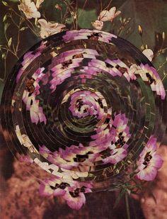 Alexis Anne Mackenzie's Stirring, Handcut Collages   Hi-Fructose Magazine