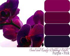 Wedding Palette red and Purple wedding