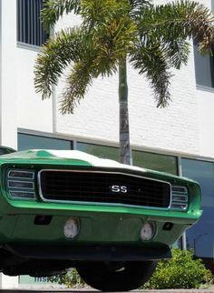 1969 BALDWIN MOTION 427 TRIBUTE catching some shade from the sun! #GreenMuscle #spon http://www.ebay.com/itm/Chevrolet-Camaro-Baldwin-Motion-/181363009560?roken2=ta.p3hwzkq71.bsports-cars-we-love