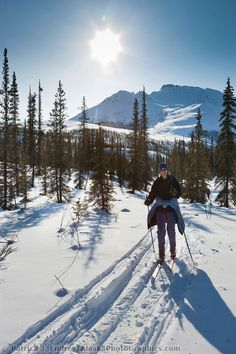Pure bliss: Cross country skiing in the Brooks Range, Gates of the Arctic National Park, Alaska Nordic Skiing, Alpine Skiing, Winter Hiking, Winter Camping, Lake Tahoe Winter, Xc Ski, Destinations, Us National Parks, Cross Country Skiing