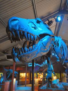 Dinosaur World: Bird and Reptile Park, Denmark - Buggybuddys guide to Perth Reptile Park, World Birds, Perth Western Australia, Free Blog, Reptiles, Denmark, Westerns, Lion Sculpture, Places To Visit