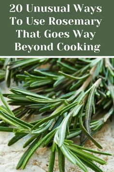 20 Unusual Ways To Use Rosemary That Goes Way Beyond Cooking is part of Medicinal herbs garden - Rosemary is one of the most aromatic and pungent herbs around, here are 20 creative ways to use this wonderful versatile herb and not just in recipes Rosemary Recipes, Rosemary Plant, Herb Recipes, How To Dry Rosemary, Uses For Rosemary, Rosemary Ideas, Recipes With Fresh Herbs, Rosemary Water, Medicinal Plants