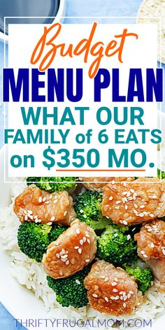 This budget meal plan shows the meals that our family of 6 has enjoyed the last two weeks. Yes, you really can eat well on a budget! Check it out and get ideas and ispiration for your own menu. #thriftyfrugalmom #mealplan #familymenu Cheap Meals On A Budget Families, Cheap Meals For 6, Budget Family Meals, Eat On A Budget, Easy Meals, Monthly Meal Planning, Family Meal Planning, Budget Meal Planning, Budget Weekly Meal Plan