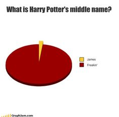 if harry was named after his father, wouldn't that mean he would have to be freaking potter too?