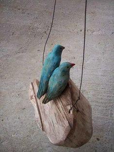 blaue Vögel