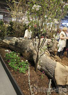 Nordiska Trädgårdar 2016, Tukholma. Firewood, Texture, Crafts, Surface Finish, Woodburning, Manualidades, Handmade Crafts, Craft, Arts And Crafts