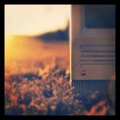 #sun #mac