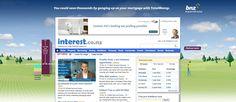 BNZ Site skin on www.Interest.co.nz
