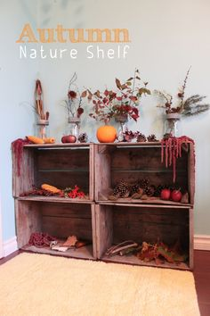 Autumn Nature Shelf - what a beautiful way to display the signs of autumn! You can do this same thing for every change of season - great idea!