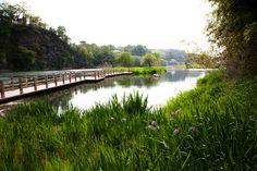 Nakdong river, Walking area