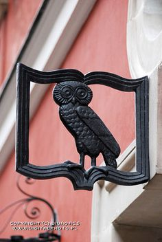 cute owl sign