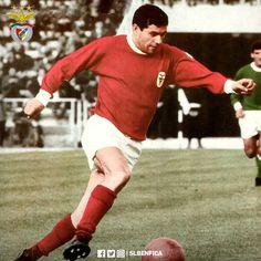(3) SL Benfica (@SLBenfica) | Twitter