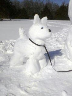 If you've got snow and a dog, consider making a snowdog! Snow Much Fun, Snowmen Pictures, Snowman Photos, Funny Snowman, Snow Activities, Ice Art, Snow Sculptures, Snow Art, Snow Dogs