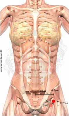 Localización del Punto: 4 cun lateral a la línea media, 0.7 cun por encima del borde superior de la sínfisis púbica. Acciones en la MTC: Calienta el calentador medio. Analgesia. Indicaciones: Hernia inguinal. Apendicitis. Anexitis. Peritonitis. Enteritis. Linfangitis inguinal. El dolor pélvico o abdominal. Masas abdominales. Mioma. Quiste de ovario. Área objetivo: Abdomen. Nombre y …