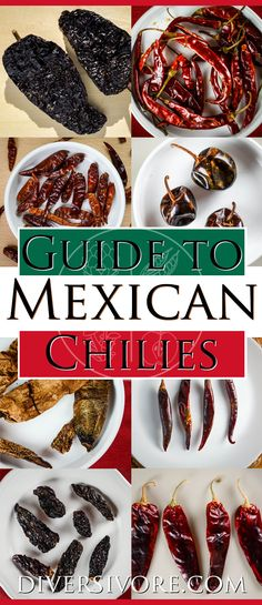 The Diversivore Guide to Mexican Chilies - A comprehensive primer on the most important Mexican chilies, plus links to detailed guides on finding, choosing, and using the different varieties. #MexicanFood #howto #chiles #chilies