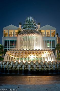 The Pineapple Fountain located at Waterfront Park, SC