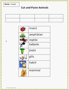Cut and Paste Animal Vocabulary worksheet