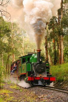 Puffing Billy steam train in the Dandenong Ranges, Victoria Australia Locomotive Diesel, Steam Locomotive, Victoria Australia, Old Steam Train, Railroad Photography, Train Art, Yarra Valley, Train Pictures, Old Trains
