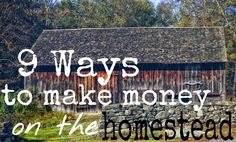 9 Ways to Make Money on the Homestead - One Ash Plantation Homestead Blog - GRIT Magazine