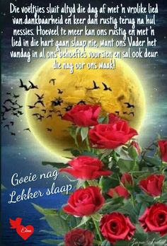 Evening Quotes, Goeie Nag, Afrikaans Quotes, Special Quotes, Sleep Tight, Good Night, Painting, Inspiration, Nighty Night