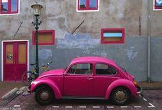 beatle, beetle, car, colors, pink, volgswagen