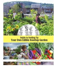 Edible Rooftop Gardening : a guide.