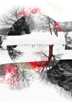 Somber Winter - Limited Edition 1 of 5 on Aluminium Art Print Mixed Media Photography, Fine Art Photography, Nature Photography, Paintings For Sale, Original Paintings, Original Art, Fine Art Paper, Artwork Online, Saatchi Art