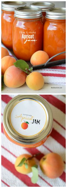 Make a pectin free Apricot Jam with this easy recipe. So yummy… Apricot Jam Recipes, Apricot Jam Recipe With Pectin, Jam Label, Jam And Jelly, Jelly Recipes, Canning Recipes, Canning Tips, Saveur, The Best