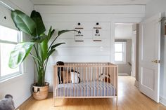 Jaimee & David's Light & Simple Scandinavian-Inspired HomeThe Scandinavian minimalism of this nursery is a pleasingly peaceful alternative to colorful, cluttered kids' rooms, while the abundance of light, wood, plants, and art keeps the nursery warm and playful. The DIY shiplap wall is inspiring, especially in a rental home, and definitely check out the mountain range on the opposite wall.