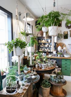 The Design Twins store sells unique, handmade homewares, designer pots and Furniture. Come by to the pot bar and have your pots painted for pick up that day. Flower Shop Decor, Flower Shop Design, Flower Shop Displays, Garden Cafe, Garden Shop, Indoor Garden, Indoor Plants, Flower Shop Interiors, Garden Center Displays