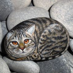 Hand Painted Cat with Orange Eyes on Stone  by KanetisStones