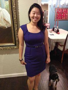 Stitch Fix Dress- Ray Cap sleeve Belted Sheath Dress
