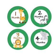 Jungle Animals Baby Month Stickers - Printable Milestone Monthly Stickers -  Giraffe Zebra Lion - Photo Prop or Baby Shower Gift - Iron Ons