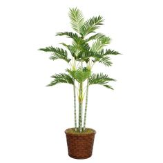 "Laura Ashley 73"" Tall Palm Tree in 17"" Fiberstone Planter, Green"