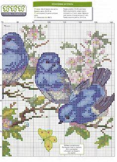 Птицы(вышивка) Cross Stitch Bird, Cross Stitch Animals, Cross Stitch Flowers, Cross Stitch Charts, Cross Stitch Designs, Cross Stitch Patterns, Bird Free, Crochet Birds, Baby Animals Pictures