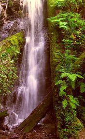 Waterfalls at Russian Gulch