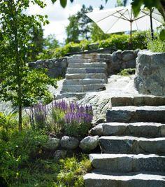 Sten och lavendel