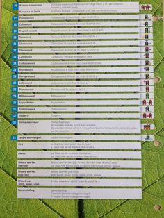 Regelkaart groep 7-8 Staal Spelling