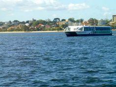 Tranperth, ferry, public, transport, swan, river, south, perth, barrack, square