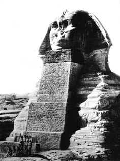 In the Giza Plateau in Egypt, at the base of the Pyramids, site one of the largest and most mysterious statues on the planet. Its name is the Great Sphinx of Giza. Ancient Ruins, Ancient Artifacts, Ancient Egypt, Ancient History, Le Sphinx, Sphinx Egypt, Old Pictures, Old Photos, Pyramids Egypt