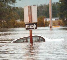 Hurricane Floyd Impacts