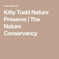Kitty Todd Nature Preserve | The Nature Conservancy