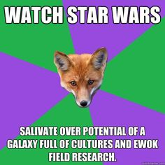 Watch Star Wars Salivate over potential of a galaxy full of cultures And ewok field research.