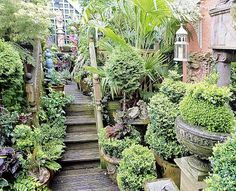 Gorgeous home gardens #forthehome #home #garden