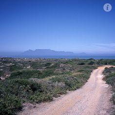Mountain Bike in Koeberg Reserve, Cape Town Cape Town Accommodation, Golf Estate, Beautiful Roads, Homeland, West Coast, Mountain Biking, Countryside, South Africa, Infinity