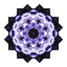 Purple and White Butterfly Mandala by Tracey Lee Everington Butterfly Mandala, Purple Butterfly, Framed Prints, Canvas Prints, Art Prints, Art Designs, Fine Art America, Christmas Gifts, Shops