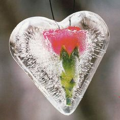 The beautiful ice decorations made of natural materials will delight family members when starts low temperatures. Ornaments of ice can be made very easily Ice Crafts, Diy Crafts For Kids, Craft Ideas, Living Room Decor On A Budget, Diy Room Decor, Christmas Floral Arrangements, Toque, Natural Materials, Christmas Diy