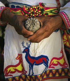 El sagrado Peyote ritual, colores, tejido